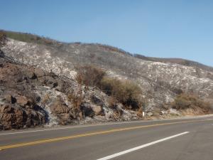Wildfire Hills